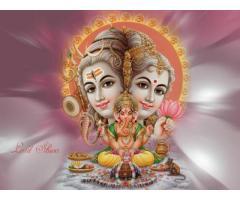 +91-75278-88849 Lost Love Solution Lost Love Back Solution in Delhi  India