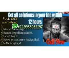Love Problem Solution Specialist Baba Ji+91 9988061197