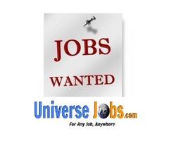 HR Head - Job Search